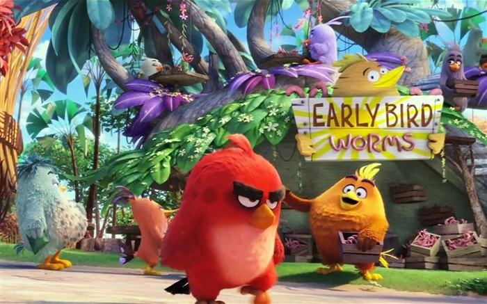The Angry Birds Movie 2016 HD Wallpaper 02 Views:1764