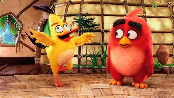 The Angry Birds Movie 2016 HD Wallpaper 03 Views:1605