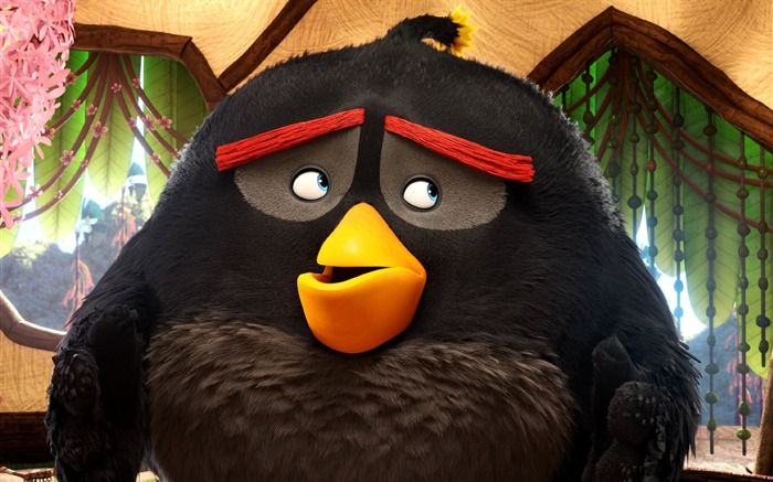 The Angry Birds Movie 2016 HD Wallpaper 08 Views:1724