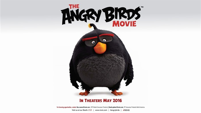 The Angry Birds Movie 2016 HD Wallpaper 10 Views:1662