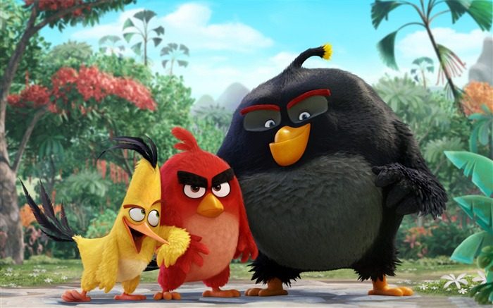The Angry Birds Movie 2016 HD Wallpaper Views:5015