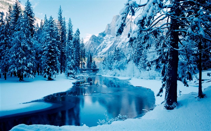 Calm blue winter-2015 Landscape Wallpaper Views:1874