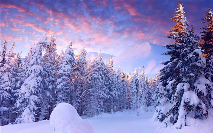 Foggy winter sunrise mountains-2015 Landscape Wallpaper Views:2218
