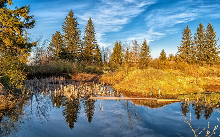 Lake forest trees autumn-HD Widescreen Wallpaper Views:1964