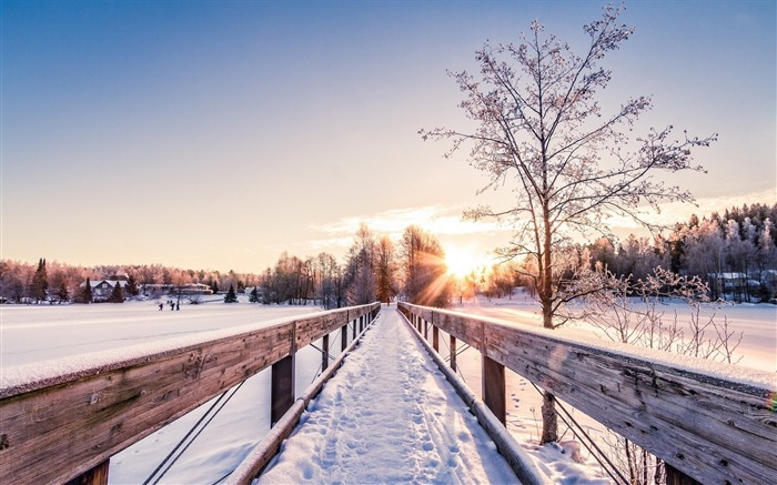 Snowy bridge sun winter-Nature HD Wallpaper Views:1741