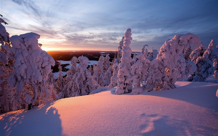 Winter lapland finland-2015 Landscape Wallpaper Views:1044