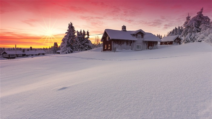 Winter nature snow dawn-2015 Landscape Wallpaper Views:1751