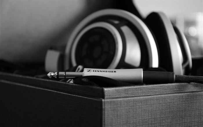 Headphones wire bw-photography HD wallpaper Views:2379