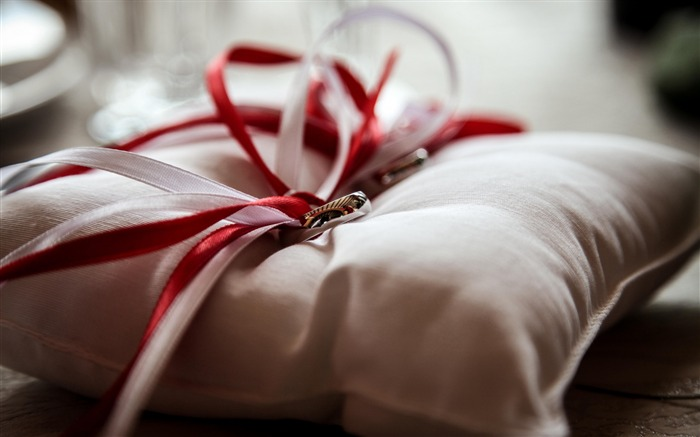 Rings bands pillow-Holiday Theme HD Wallpapers Views:2252