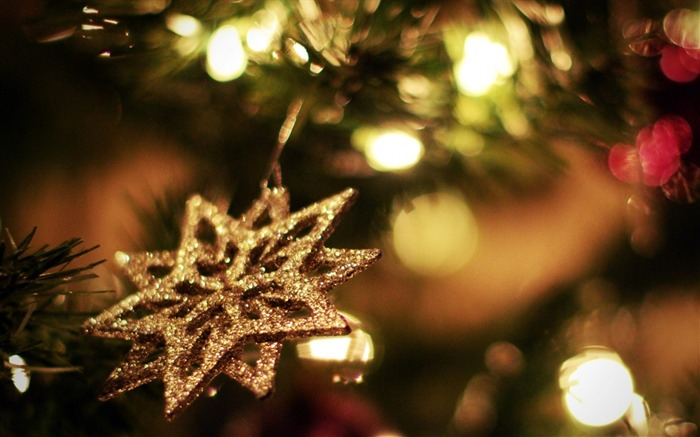 Snowflake bright light decoration-Holiday Theme HD Wallpapers Views:2104