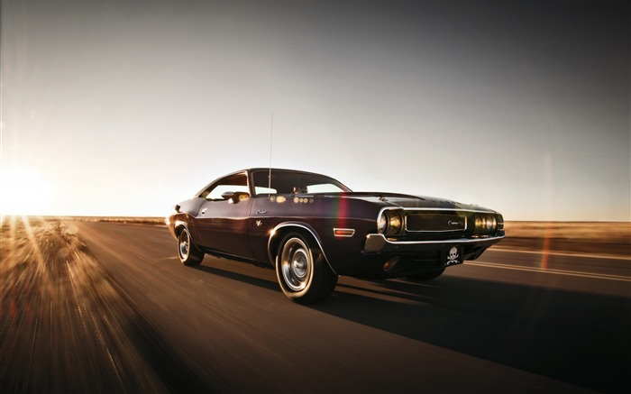 Dodge challenger-High Quality HD Wallpaper Views:1494