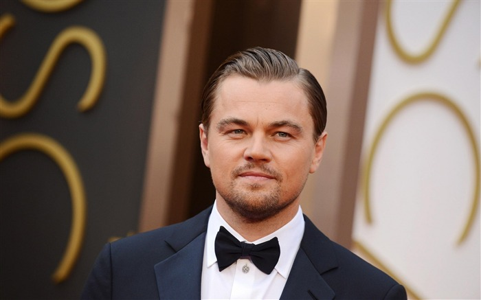 Leonardo Dicaprio 88th Academy Awards Theme Wallpaper 02 Views:1416