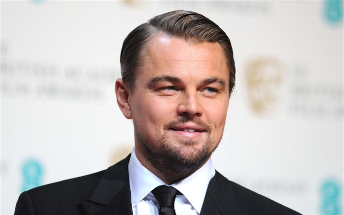 Leonardo Dicaprio 88th Academy Awards Theme Wallpaper 03 Views:1315