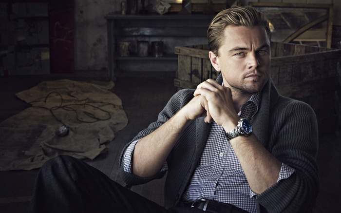Leonardo Dicaprio 88th Academy Awards Theme Wallpaper 07 Views:1371
