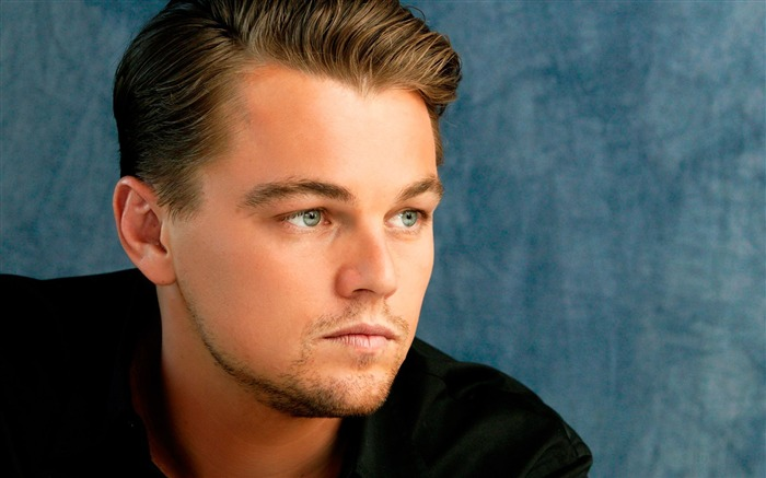 Leonardo Dicaprio 88th Academy Awards Theme Wallpaper 16 Views:643