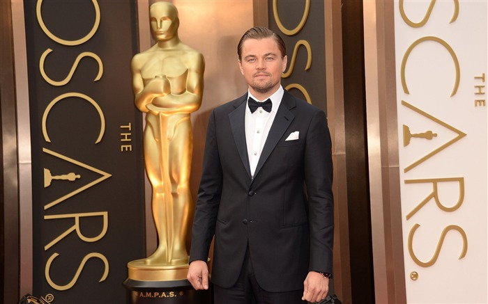 Leonardo Dicaprio 88th Academy Awards Theme Wallpaper Views:9629