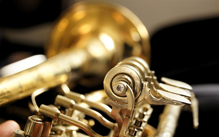 Music Trumpet-High Quality Wallpaper Views:999