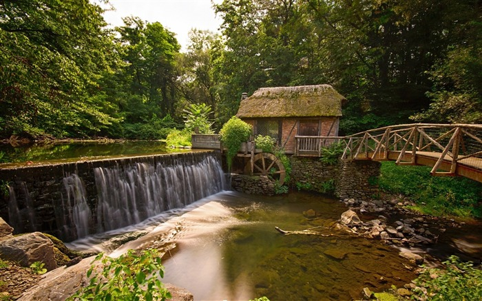 Old watermill forest river-Nature photography HD wallpaper Views:1703