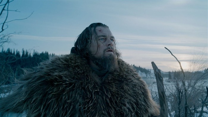 The Revenant 2016 Leonardo DiCaprio HD Wallpaper 05 Views:1319