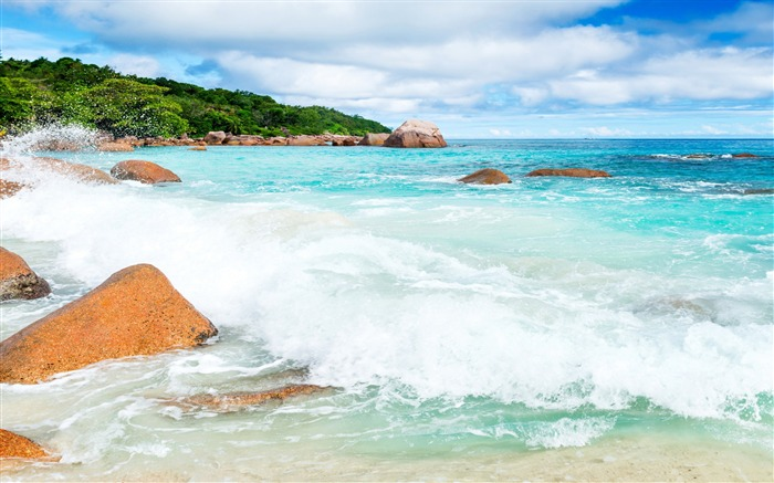 Awesome Waves Beach-Nature High Quality Wallpaper Views:1899