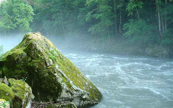Mountain river stone moss-Nature High Quality Wallpaper Views:1851