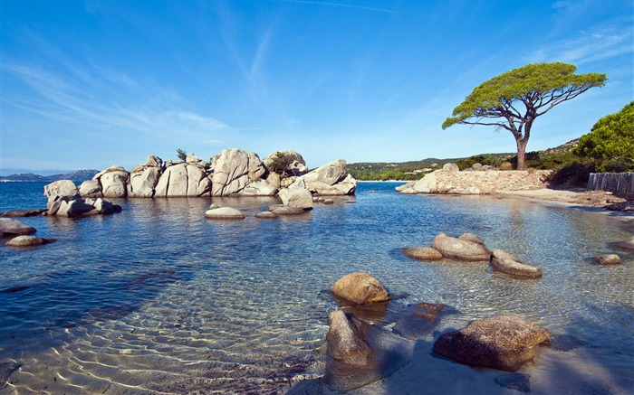 Palombaggia beach sunny-Nature High Quality Wallpaper Views:3086