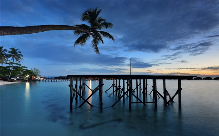 Sea palm bungalows evening-Nature High Quality Wallpaper Views:1123