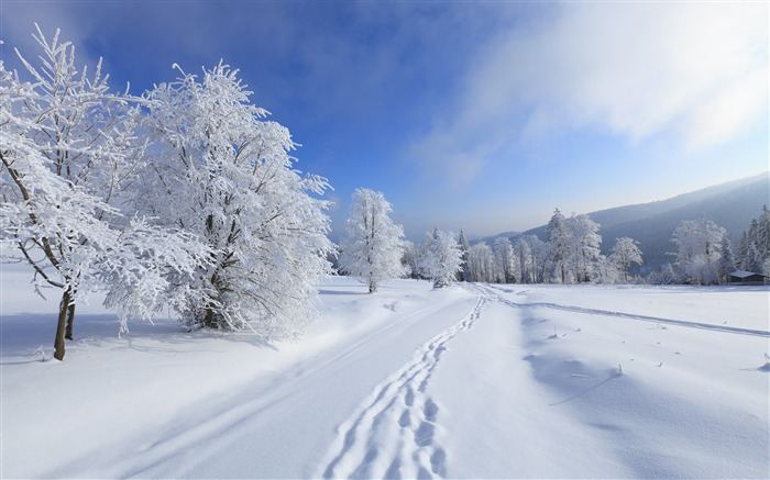 High mountains winter snow-Nature Scenery HD Wallpaper Views:3227