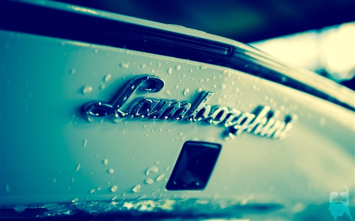 Lamborghini Brand Logo-Still Life Macro HD Wallpaper Views:1477