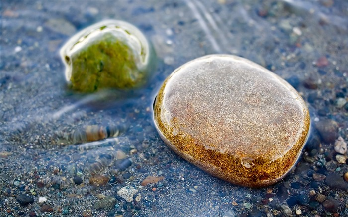Stones moisture sea watercolor-Still Life Macro HD Wallpaper Views:1059