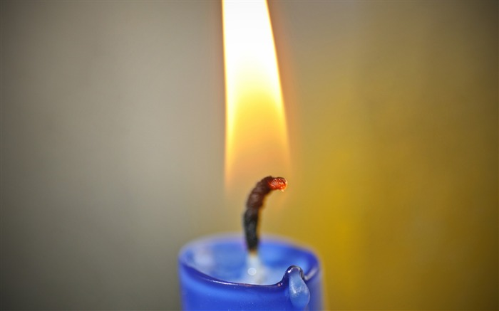 Wick candle flame fire-Macro Photo Wallpaper Views:987