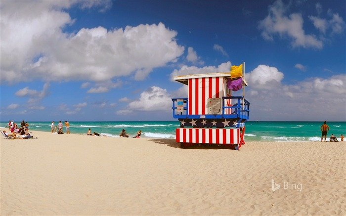 Florida Miami Lifeguard station-2016 Bing Desktop Wallpaper Views:1191