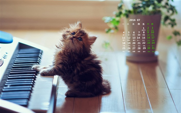 July 2016 Calendar High Quality Wallpaper 02 Views:1069