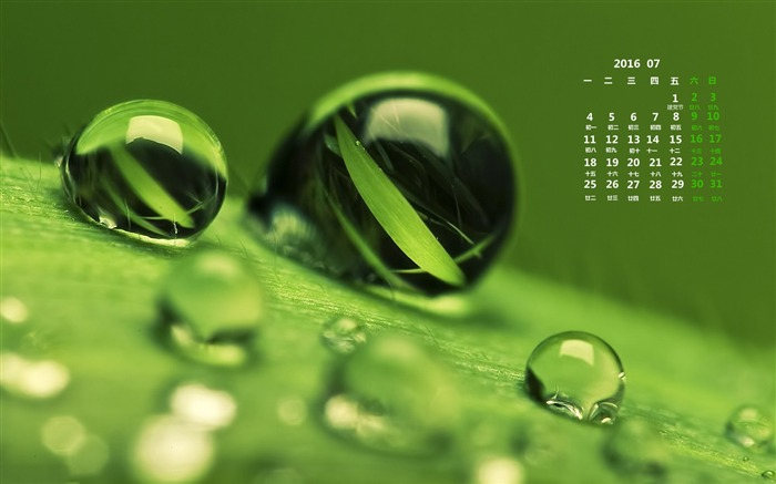July 2016 Calendar High Quality Wallpaper 13 Views:1316