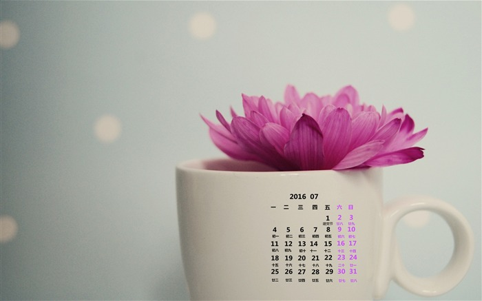 July 2016 Calendar High Quality Wallpaper 17 Views:881