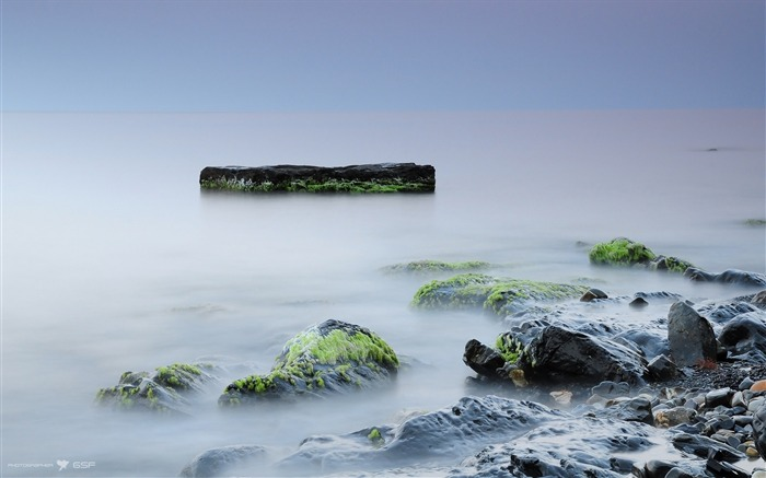 Stones moss rocks silence fog-Scenery High Quality Wallpaper Views:1039