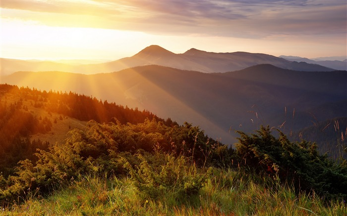 Sunrise mountain jungle-HD Retina Wallpaper Views:924