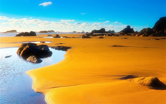 The desert river of life-HD Retina Wallpaper Views:866