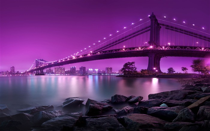 Bridge purple light-2016 High Quality Wallpaper Views:1889