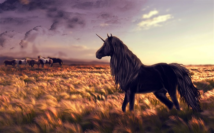 Unicorn horse nature black-2016 Art Design HD Wallpaper Views:1116