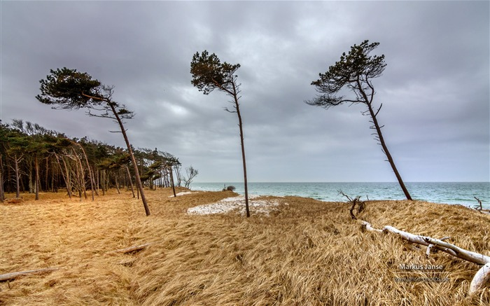 Markus Janse Germany Baltic Sea Fischland wallpaper 18 Views:788