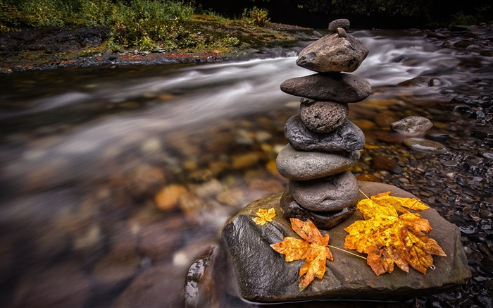 Autumn forest leaves stones river water-Nature Photo HD Wallpaper Views:1630