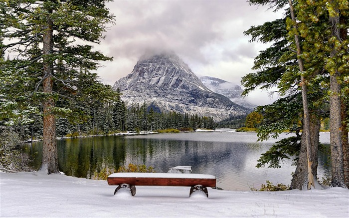 Bench by the lake in the winter-Windows 10 HD Wallpapers Views:1532