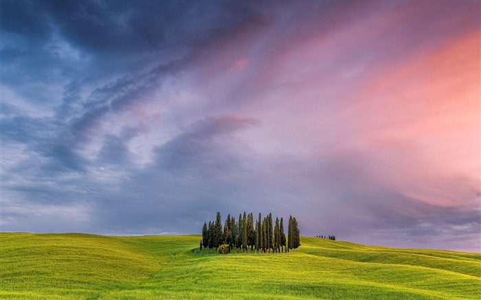 Italy tuscany grassland trees-Scenery High Quality Wallpaper Views:4101 Date:10/23/2016 6:46:18 PM