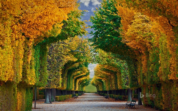 Title:Schonbrunn Palace Vienna-2016 Bing Desktop Wallpaper Views:1160