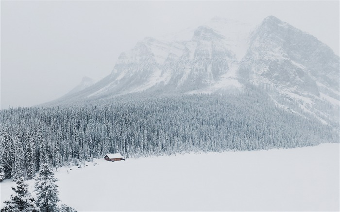 Winter snow mountains trees-Scenery High Quality Wallpaper Views:2276 Date:10/23/2016 6:56:39 PM