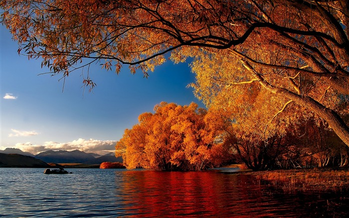 New zealand autumn lakes-Nature Scenery Wallpaper Views:2073