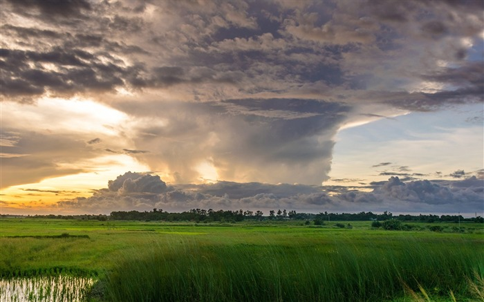 Summer storm clouds gathering-Nature Scenery Wallpaper Views:910
