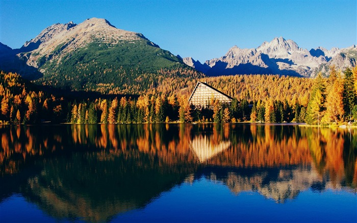 Beautiful forest lake scenery-World Travel HD Wallpaper