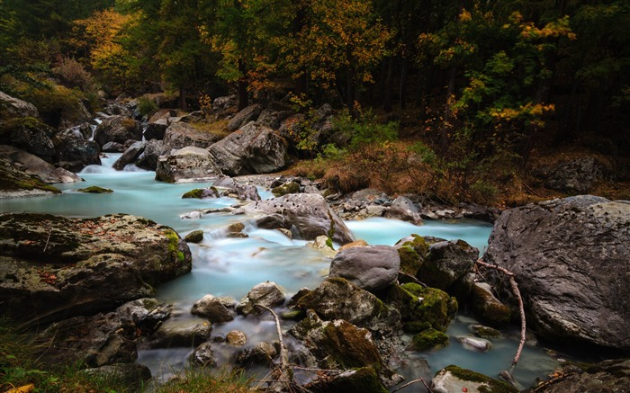 Forest stream rivers-Nature High Quality HD Wallpaper Views:6270 Date:12/10/2016 10:14:42 PM